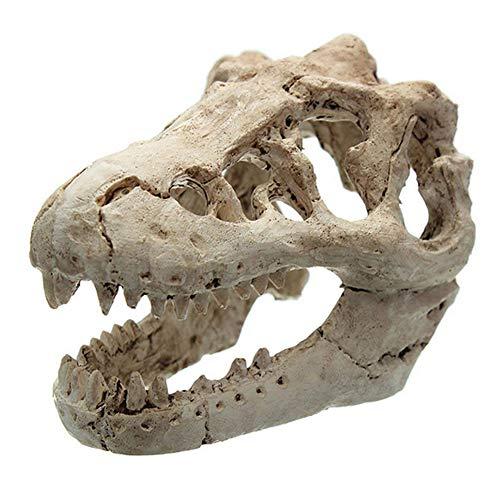 Ruiting Ornement Aquarium Crâne De Dinosaure Décoration pour Réservoir De Poissons