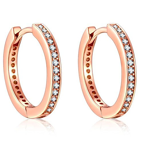 Presenski Rose Gold Creolen Damen, Kleine Earrings Kreis Ohrringe Silber 925 Creolen Zirkonia Earrings Geschenke für Mama Frauen