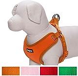 Blueberry-Haustiergeschirr für kleine Hunde/Hundeweste, klassisch, einfarbig, gepolstert