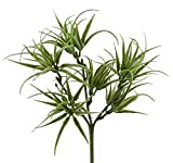 Tillandsien Pick grün Kunststoff 19cm Kunstpflanze Trockenflorstik Sukkulente Aquariumdeko Dekopflanze