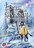 Louis Le Galoup - Tome 3 - Le maître des tours de Merle