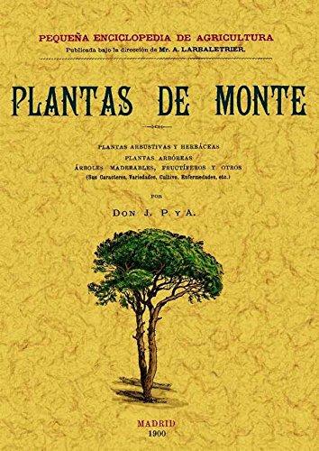 Plantas de Monte