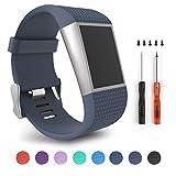 Für Fitbit Surge, Ersatz Bands für Fitbit Surge Activity Tracker (Rock Blue Size L)
