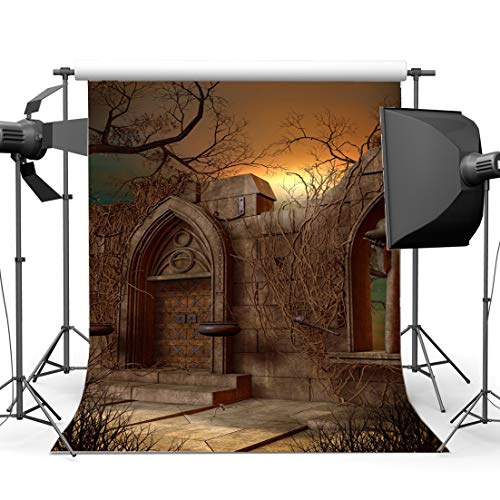 rgrund 5X7FT Vinyl Gothic Bogentür Kulissen Spooky Haunted Castle Trockene Ivy Horrible Night Hallowmas Fotografie Hintergrund Kinder Erwachsene Kostüm Party YX896 ()