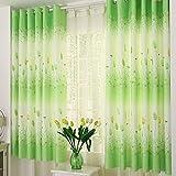 Tongshi sombreado floral de la gasa de la cortina de puerta divisor de la cortina de ventana de habitaciones (F)