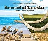 Meeresstrand und Mammutwiese: Geologie und Paläontologie des Weinviertels - Thomas Hofmann