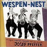 Wespen-Nest