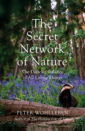 The Secret Network of Nature: The Delicate Balance of All Living Things (English Edition)