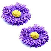 tumundo 2 Barrettes Slide Hair Tie Blossom Flower Power Daisy Bow Ribbon Braid Bobby Pin Clip Hippie Pink Blue White Purple Rose, Color:Purple