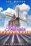 Trilogia Provenzale: Romanzi Erotici M/M (Brad in Vacanza Vol. 5)