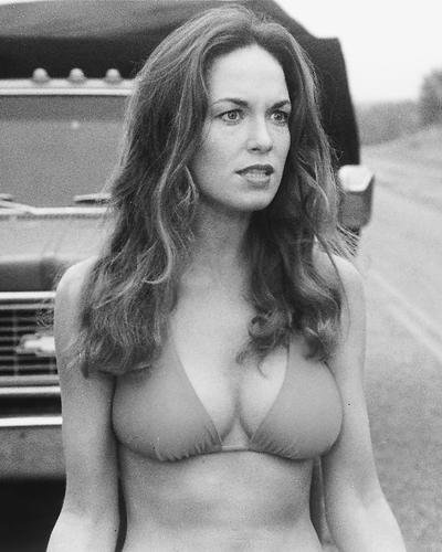 Moviestore Catherine Bach als Daisy Duke in The Dukes of Hazzard 36x28cm Schwarzweiß-Foto