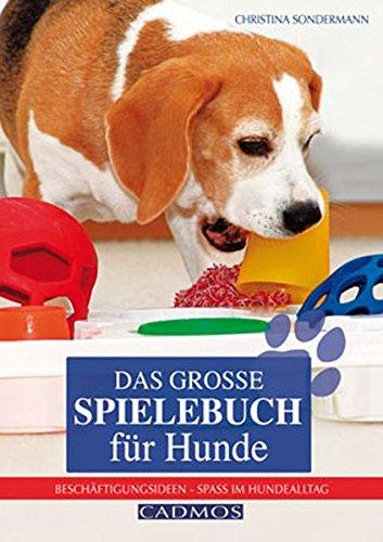 Das große Spielebuch für Hunde: Beschäftigungsideen - Spaß im Hundealltag