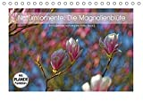 Naturmomente: Die Magnolienblüte (Tischkalender 2018 DIN A5 quer): Die Magnolie - unser schönster Frühlingsbote (Geburtstagskalender, 14 Seiten ) ... [Kalender] [Apr 01, 2017] Eisold, Hanns-Peter
