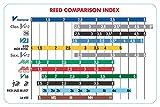 Vandoren CR8025 Série V21 force 2,5 Boîte de 10 Anches pour Clarinette SIB Bleu