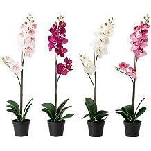 Colores artificial planta en maceta, Orquídea Surtido - - IKEA FEJKA 12 cm