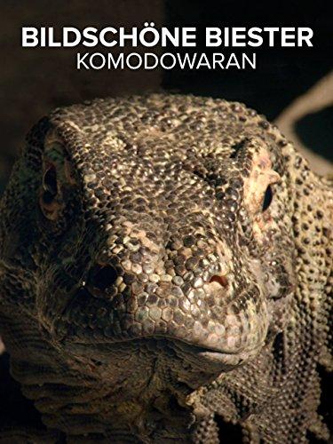 Bildschöne Biester Komodowaran