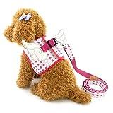 ranphy Kleiner Hund/Katze weichem Mesh-Dot Schritt in PET Geschirr ohne Pull Vest Doggy Harness mit Flügeln Leine Set