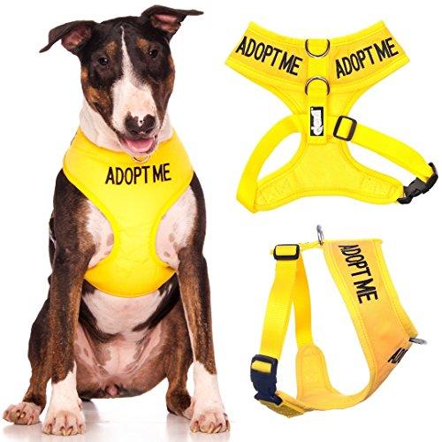 adoptieren mich gelbe farbcodierte nicht Pull Front und Rücken gepolstert D-Ring und wasserdichte...