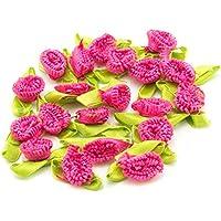HAND H0675 Bella nastro arco Sew On Trim con cute fiori Fringe dettagliate per Abbigliamento abbellimento 25 millimetri x 14 mm Confezione da 20, Hot Pink