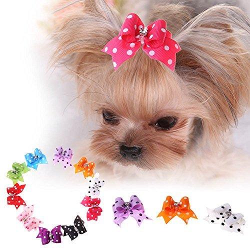 Broadroot Haarspange für Hunde und Katzen, 10 Stück