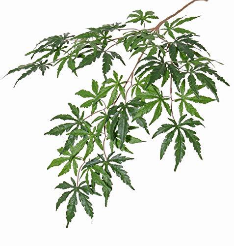 Kunstpflanzen Nur zur Dekoration geeignet