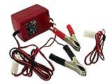 Hella Ladegerät für Batterie 6V -12 Volt von Hella (für 4 - 15Ah)