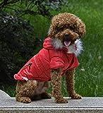Cappotto per animali domestici, ispessimento foderato in cotone con cappuccio giacca a vento sottile antivento cappotto giacca fredda inverno caldo Pet piccolo cane vestiti petto protettore cappotto sportivo casual 5 colori e 6 dimensioni ( Color : Red , Size : XXL )
