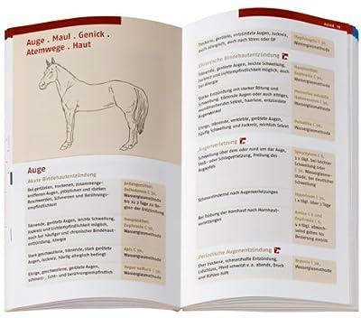 Homöopathie für Pferde: Pferdegesundheit kompakt