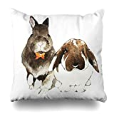 Trsdshorts Throw Pillows Covers Minirex Holland Lop Bunnies Bunny Watercolor Painting Wildlife Rabbit Cushion Case Pillowcase Home Sofa Couch Square Size 18 x 18 Inches Pillowslips