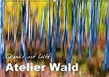 Atelier Wald - gemalt mit Licht (Wandkalender 2018 DIN A2 quer): Naturfotografie der Spitzenklasse - ohne Computereffekte! (Monatskalender, 14 Seiten ... Natur) [Kalender] [Apr 01, 2017] BÖHME, Ferry