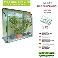 "Verdemax 2645 - Telo Ricambio Per Serra Da ""L""200 X ""P""100 X ""H""215 Cm"