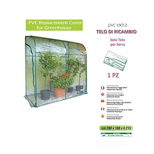 Verdemax 2645 - Telo Ricambio Per Serra DaL200 X P 100 X H 215 Cm