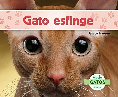 Gato Esfinge (Sphynx Cats) (Spanish Version) (Gatos/ Cats) por Grace Hansen