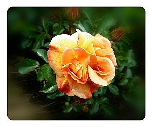 rosa-tappeto-ambra-rettangolo-mouse-pad-by-custom-servizio-la-scelta-migliore