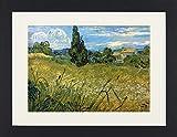 1art1 113293 Vincent Van Gogh - Grünes Weizenfeld mit Zypresse, 1889 Gerahmtes Poster Für Fans und Sammler 40 x 30 cm