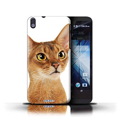 Kobalt® Imprimé Etui / Coque pour HTC Desire 816 / Scottish Fold conception / Série Espèces de chats Abyssinien