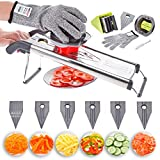 Mandolin Slicer, Vegetable Shredder, Julienne 6 in 1 Food Grater, Cutter. V Blade