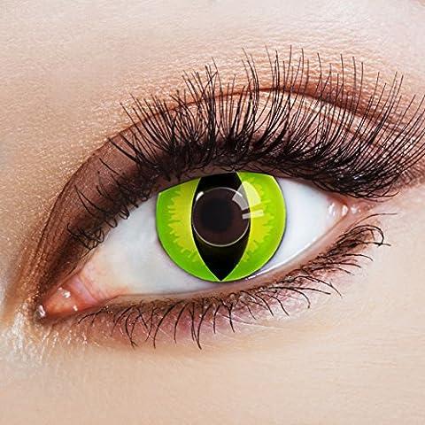 aricona Farblinsen – Katzenaugen deckend grün – farbige Kontaktlinsen ohne Stärke – bunte, farbig intensive gelb grüne Farbkontaktlinsen für Halloween & (Cats Musical Halloween Kostüme)