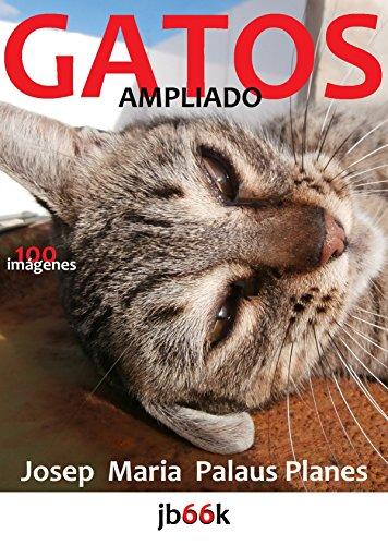 Descargar Libro Gatos [ampliado] de JOSEP MARIA PALAUS PLANES