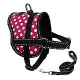 BLEVET Reflektierende No-Pull Hundegeschirr Einstellbar für kleine/mittelgroße/große Hunde und Welpen MZ051 (S, Rose Red)