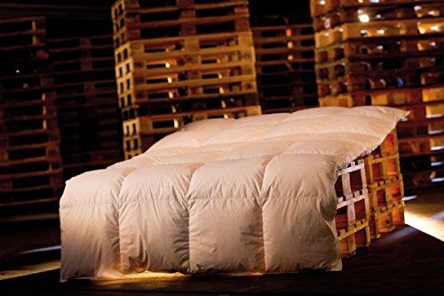 Premium Winterdecke / Bettdecke 200x220 2340Gramm 50%Daunen / 50%Federn Serie Moon