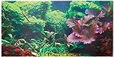 Aquatic Creations, Hintergrund für Aquarien, statische Haftung