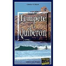 Tempête à Quiberon: Thriller psychologique (Enquêtes & suspense)