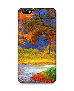 Amez designer printed 3d premium high quality back case cover for Huawei Honor 4X (nature beauty scenary)