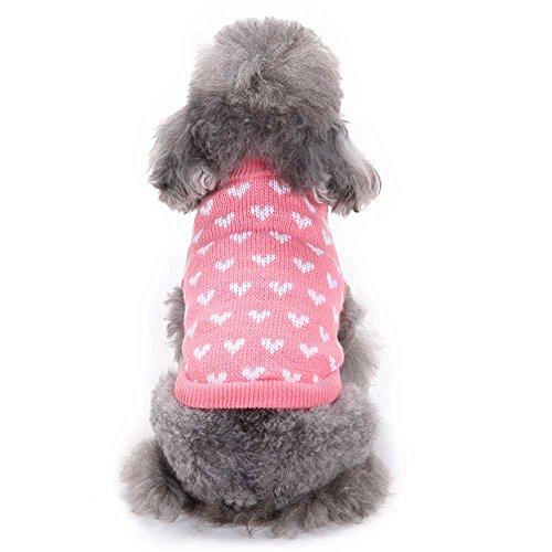 eatshirt HARRYSTORE Runden Hals Klein Haustier Hund Niedlich Sweatshirt (S, Rose) (Niedliche Kleine Mädchen Halloween-kostüm Ideen)