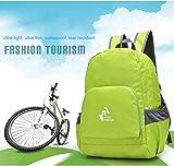 Unisex - Kinder Rucksack Little Joe - Rucksack Für Schule, Laptop Rucksack. Schulrucksack Für Teenager Schwarz. Outdoor und Uni (green)