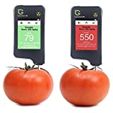 Greentest, New Touch Screen Nitrate-tester/Meter for Fruit and Vegetable ,High Accuracy Food Detector-Black