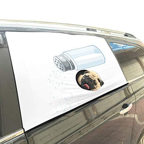 Strumenti di cottura salina pieghevole animali di sicurezza per cani pieghevole finestra stampata per recinzione barriere di protezione per bambino kid regolabile copertura per ombrellone flessibile