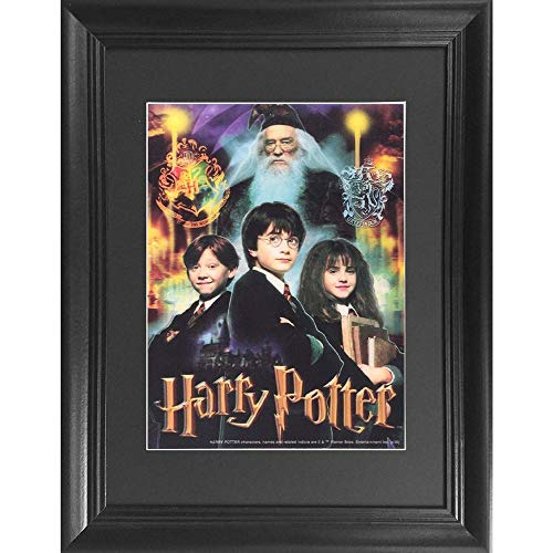 The 3D Art Company DC Comics 3D Kunst Harry Potter The Boy Who Lived (Poison Ivy-bombshell Poster)
