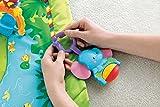 Mattel Fisher-Price K4562 Rainforest Erlebnisdecke Bild 12